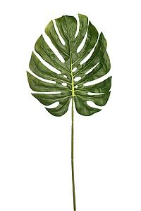 HOJA DE MONSTERA ARTIFICIAL 80CM